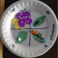 okul-öncesi-dünyam-kelebeğin-oluşumu