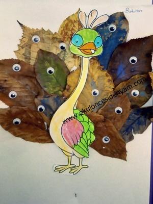 okul öncesi tavuskuşu etkinlik örnekleri