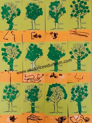 okul öncesi ağacın kısımları